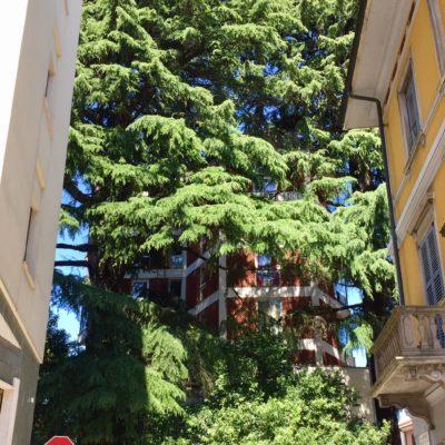 Varese centro